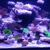 Reefer 170 nach Einrichtung